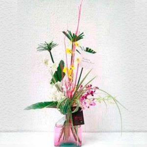Arreglo Orquídea Solitario Mini