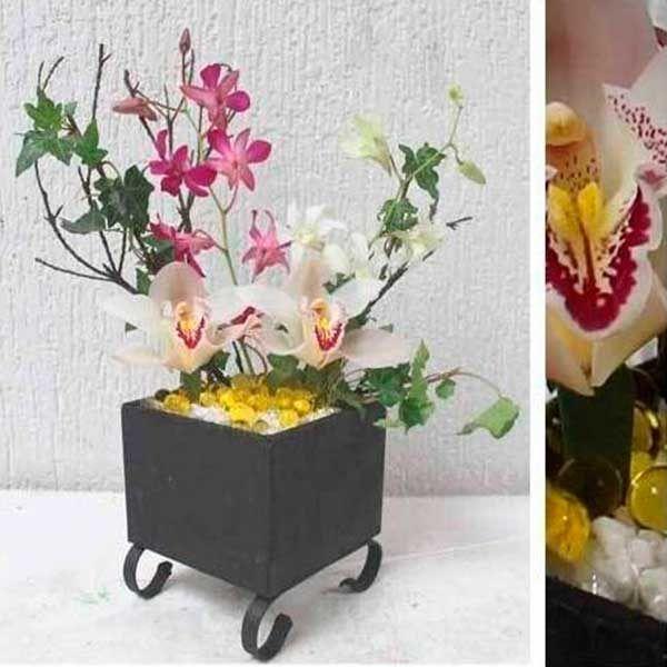 Arreglo Floral con Orquídea Cymbidium Singapur