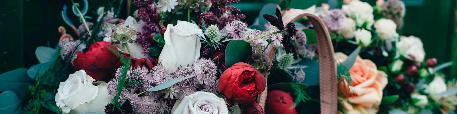 Flores por Ocasión